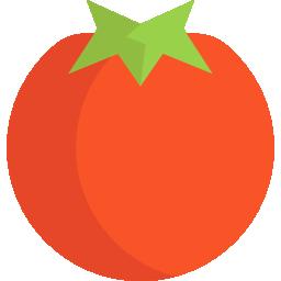 tache-tomate-sur-tapis